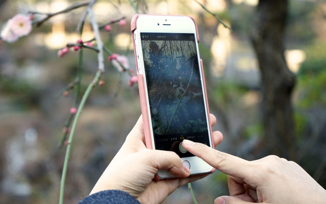 ホワイトデーギフトに!桜色ラムスキンのiPhoneケースを数量限定で発売開始。